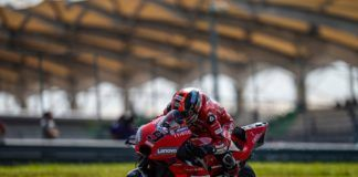 Danilo Petrucci, Ducati, MotoGP