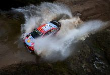 Thierry Neuville, WRC, Rally Argentina